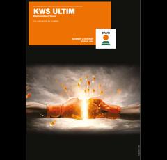 Blé tendre d'hiver - KWS Ultim