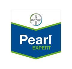 PEARL EXPERT