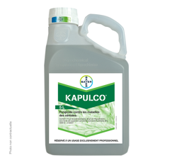 KAPULCO