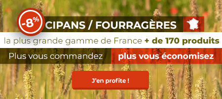 Cipan Fourragères -8%