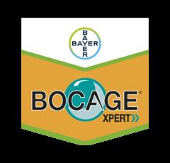 BOCAGE XPERT