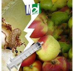 Diffuseur seringue Carpocapse des pommes