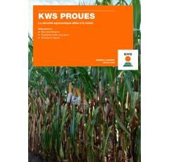 Maïs mixte précoce - KWS Proues