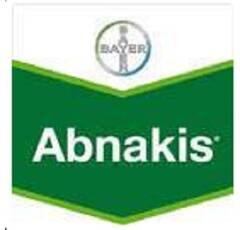 ABNAKIS