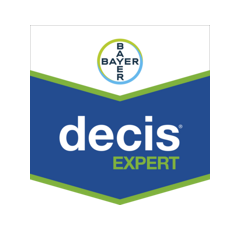 DECIS EXPERT