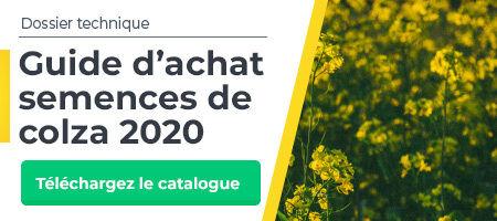 Guide d'achat semences de colza 2020